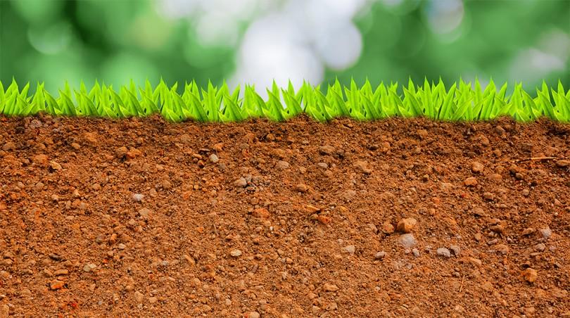 D a mundial de la conservaci n del suelo se celebr este for Clausula suelo acuerdo no reclamar