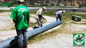 1 traslado de mangueras Laguna de Urao