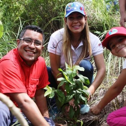 Plantación de árboles en Aragua